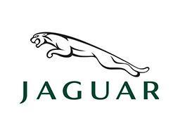 logo-jaguar-moteur-paris-ile-de-France-occasion-neuf-livre-75-91-93-94-78-77-92-pas-cher-livraison-rapide