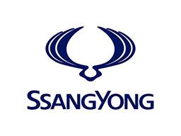 logo-ssang-yong-moteur-paris-ile-de-France-occasion-neuf-livre-75-91-93-94-78-77-92-pas-cher-livraison-rapide